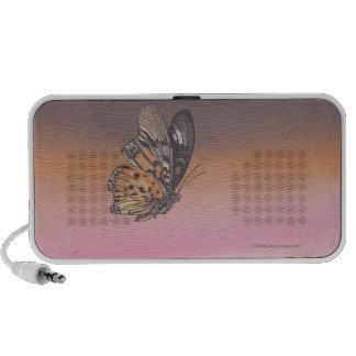 Pintando la representación de la mariposa en vuelo iPod altavoz