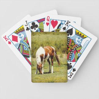 Pinte el caballo barajas de cartas