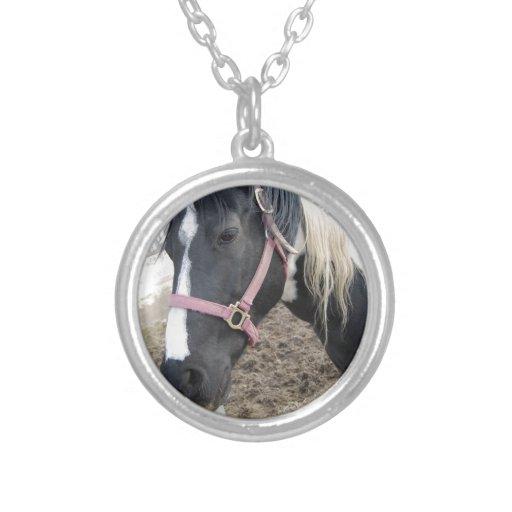 Pinte el caballo del Pinto Colgante Redondo