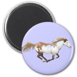 Pinte el caballo, Dixie Imán Redondo 5 Cm