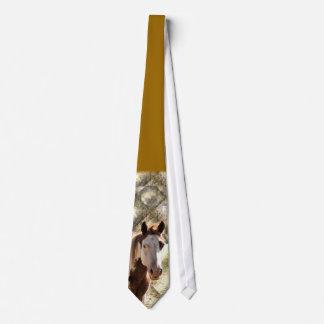Pinte el caballo en el lazo del pasto corbata personalizada