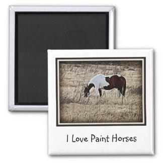 Pinte el caballo imán para frigorifico