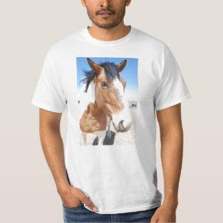 Pinte el caballo playera