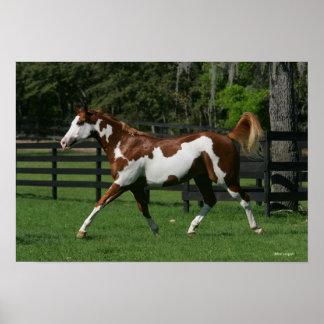 Pinte el caballo que corre 1 póster