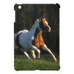 Pinte el caballo que corre rápidamente iPad mini protectores