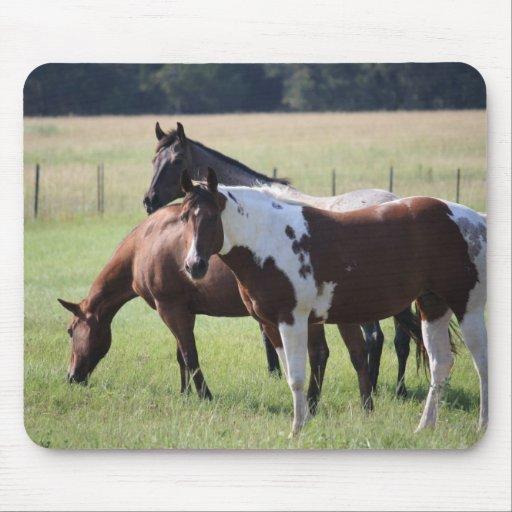 Pinte el caballo y a los amigos alfombrilla de ratón
