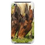 Pinte el caso de iTouch del amor del caballo Case-Mate iPod Touch Coberturas