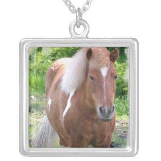 Pinte el collar cuarto del caballo
