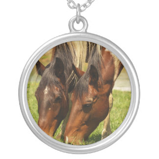 Pinte el collar del amor del caballo