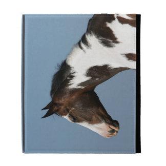 Pinte el Headshot 1 del caballo