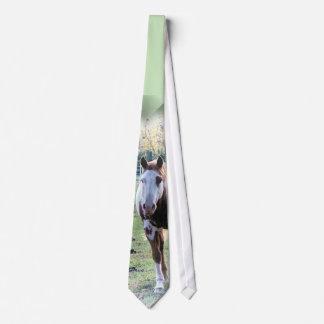 Pinte el lazo del caballo para los amantes del corbatas personalizadas