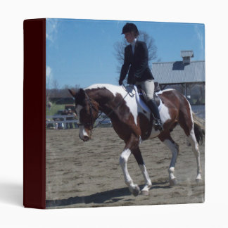 Pinte la carpeta de la demostración del caballo de