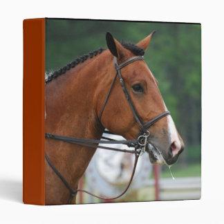 Pinte la carpeta del caballo de la demostración