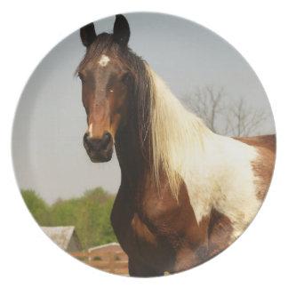 Pinte la placa del caballo plato de comida