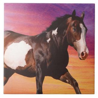 Pinte la teja de la salida del sol del caballo