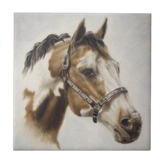Pinte la teja del caballo