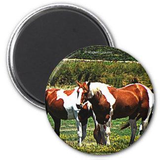 Pinte los caballos imán de frigorifico