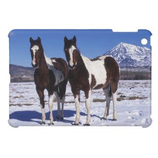 Pinte los caballos que se colocan en la nieve