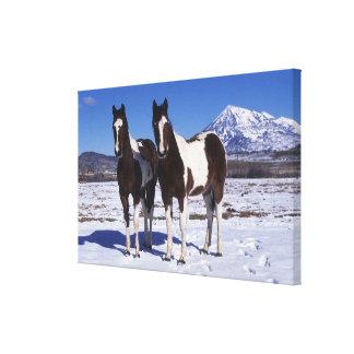Pinte los caballos que se colocan en la nieve impresiones de lienzo
