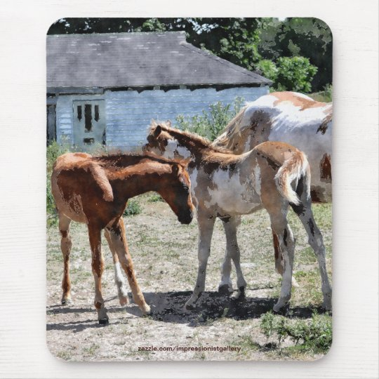 Pinto & Chestnut Foals Horse-lovers Mousepad