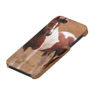 Pinto Customizable Case Covers For iPhone 5