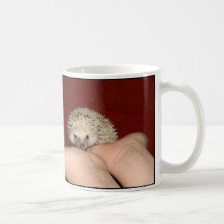 Pinto Cutie mug