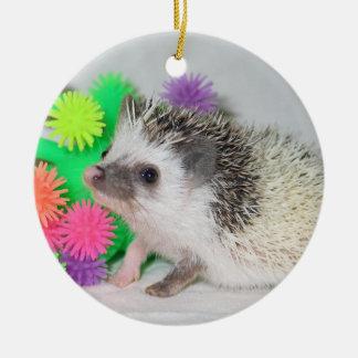 Pinto cutie ornament
