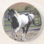 Pinto del caballo/de la pintura posavasos manualidades