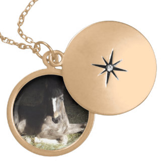 Pinto Filly Gold Plated Necklace