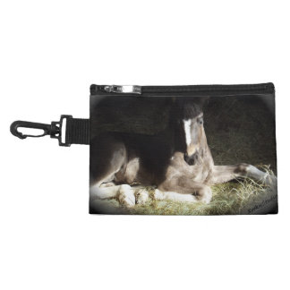 Pinto Foal Accessories Bag