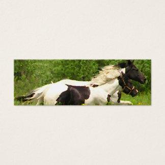 Pinto Horses Gift Tag