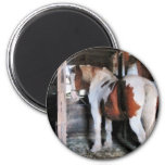 Pinto Looking Back Refrigerator Magnet