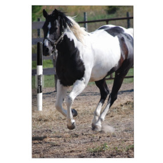 Pinto Paint Horse Dry Erase Board