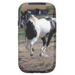Pinto Paint Horse Galaxy S3 Cover