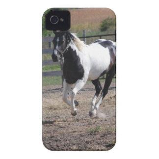 Pinto Paint Horse iPhone 4 Case-Mate Case