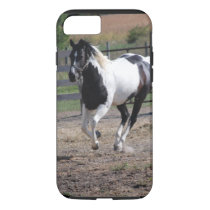 Pinto Paint Horse iPhone 7 Case