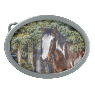 Pinto Paint Stallion & Evergreen Trees Belt Buckle