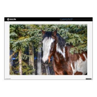 Pinto Paint Stallion & Evergreen Trees Laptop Decal