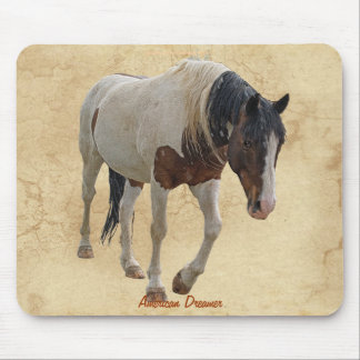 Pinto Painted Horse on Parchment BG Mousepad