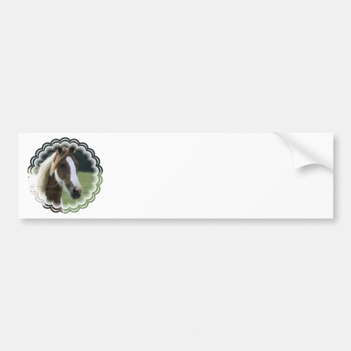 Pinto Pony Bumper Stickers