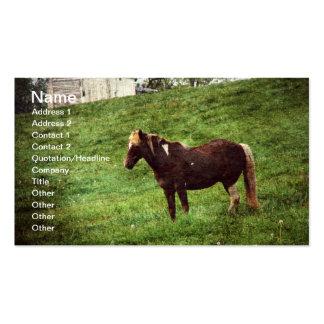 Pinto Pony Business Card