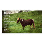 Pinto Pony Business Card Template