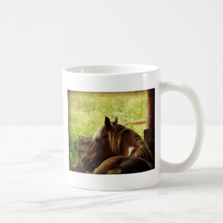 Pinto Pony Coffee Mugs