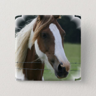 Pinto Pony Square Pin