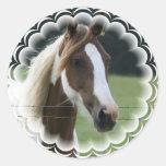 Pinto Pony Stickers