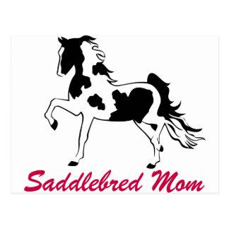 Pinto Saddlebred Mom Postcard