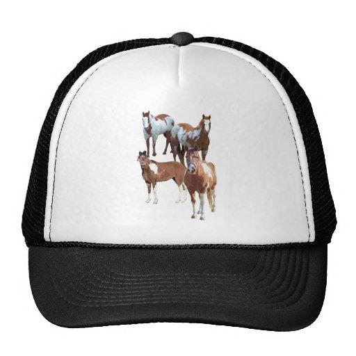 Pintos And Paints cap Trucker Hat