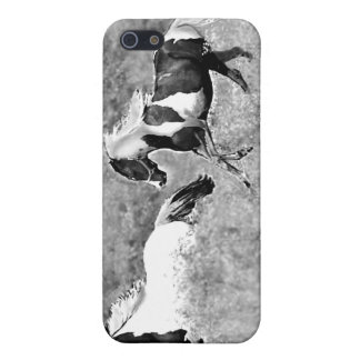 Pintos Galloping, Customizable iPhone 5 Covers