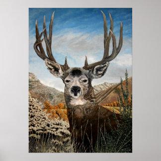Pintura al óleo del ciervo mula posters