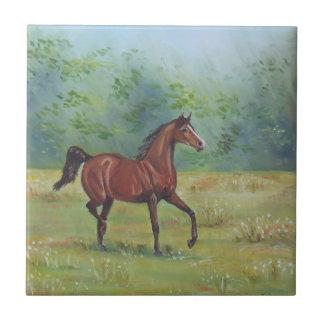 Pintura al óleo irlandesa del caballo de Juana Cas Azulejo Cuadrado Pequeño